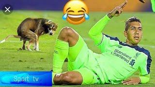 Funniest Moments, Gol, Autogol, Fails  (sport tv )