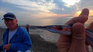 Погода на море Рыбалка просто замечательная Рыбу еле донес Лазаревское сегодня 05 11 2020 Сочи
