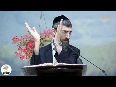 הלכות פרות האדמה - הרב יצחק יוסף HD - שידור חי