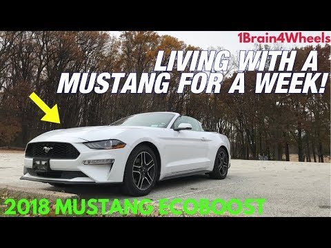 2018 Ford Mustang Ecoboost Review *By a Corvette Owner*