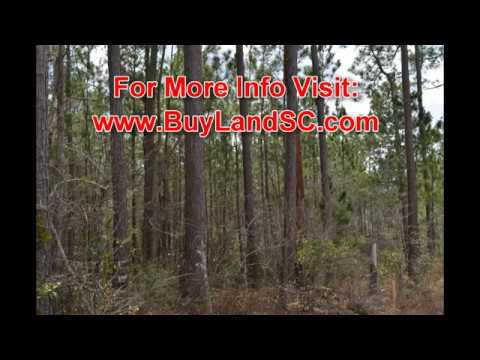 Hunting Land for Sale, 10 Acres in South Carolina