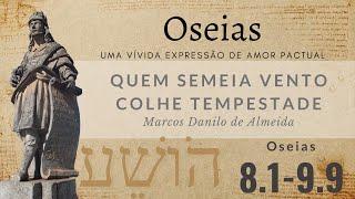 Quem semeia vento colhe tempestade  (Os 8.1-14) | Marcos Danilo de Almeida | 25/abr/2021