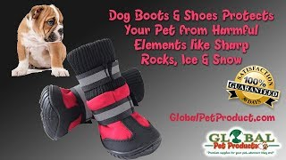 best dog boots right in the USA best dog boots