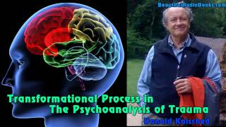 Baixar Transformational Process in the Psychoanalysis of Trauma by Donald Kalsched  - part 1