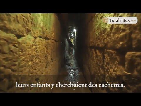 Visite Des Tunnels Du Kotel