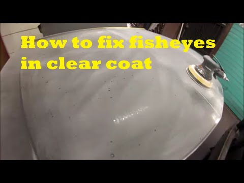 How To Fix Fisheyes In Clear Coat