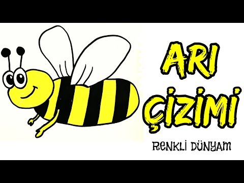 Ari Nasil Cizilir Ari Cizimi How To Draw A Bee Renkli Dunyam