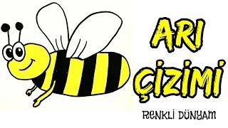 Arı Nasıl Çizilir ? Arı Çizimi (How to draw a bee) Renkli Dünyam
