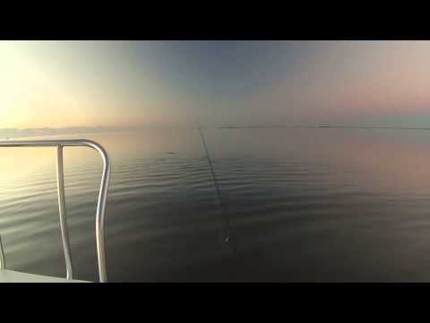 Running up on a school of redfish in the Lower Laguna Madre