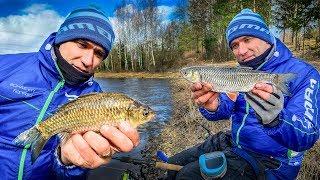 Рыбалка на фидер КАРАСЬ и ГОЛАВЛЬ Секреты ловли Весення рыбалка 2020 Vlog 49