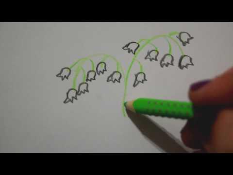 Maiglöckchen zeichnen Blumen malen – draw lily of the valley  рисуем ландыши desenhar Lírios do Vale