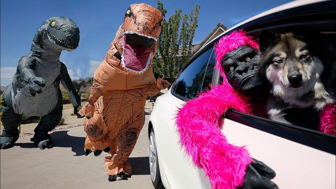 Gorilla & Kakoa Escape Giant T Rex! POV Chase