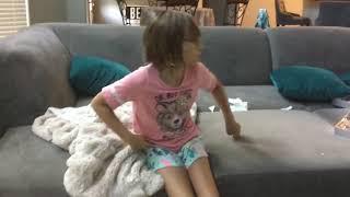 I am fostering kitties!