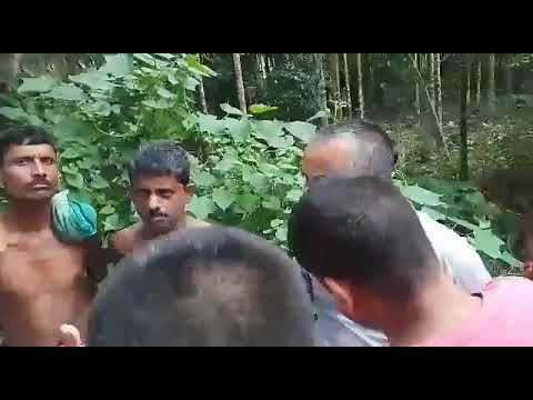 Assam Pawer distribution company limited