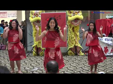 Lunar New Year Celebrated in the US