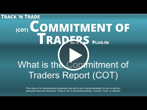 What is the Commitment of Traders Report (COT)
