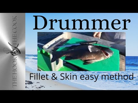 How To Fillet And Skin Drummer | The Hook And The Cook