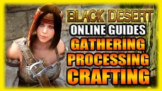 Black Desert Online Gameplay and Guides - Gathering, Processing, and Crafting Explained!