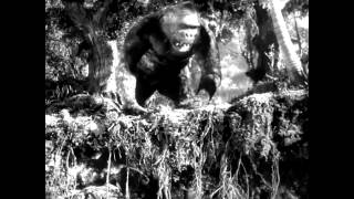 KING KONG - The Lost Spider Pit Sequence recreation (2015)