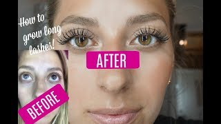 LASH SERUM BEFORE & AFTER! Growing Long Lashes
