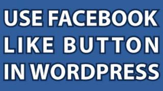 Like Button on Wordpress