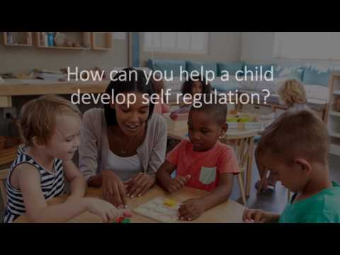 What Why How Self Regulation Video