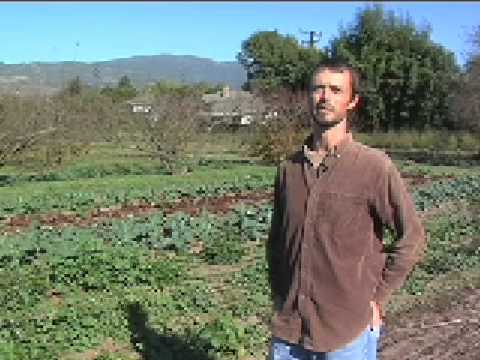 Fairview Gardens Organic Farm nestled in an urban area of Goleta California