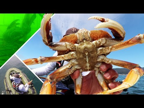 SUCCESS! Ocean Crab and Rockfish from a Cheap Raft | Fascinating Crab Pot Footage