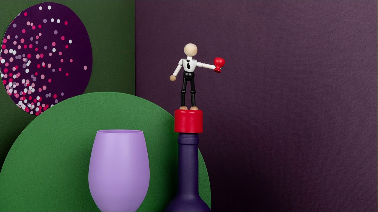 NEW Ototo Wasted Bottle Stopper