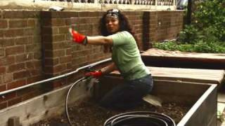 Drip Irrigation For Raised Beds