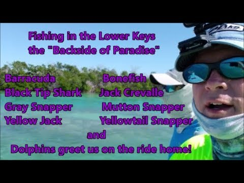 Fishing In Key West & The Lower Florida Keys On The Backside Of Paradise