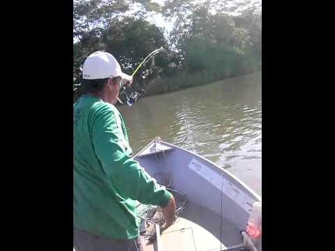 Pescaria pauliceia pacú.ze e maurinho de tupã