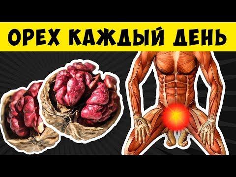 Даже 1 Орех может запустить Необратимый процесс в организме