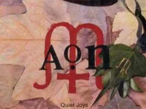 AON - Quiet Joys
