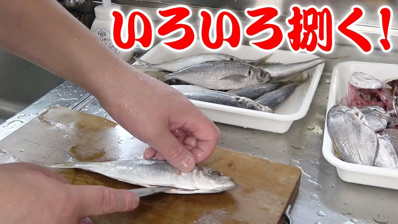 いろいろな種類の魚を捌いてみたよ!