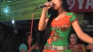 Video Aku Rapopo JUPE versi Ayu HOT Campursari Shela Nada download MP3, 3GP, MP4, WEBM, AVI, FLV Oktober 2019