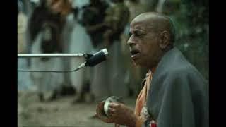 Bhaja Hu Re Mana ~ Srila Prabhupad Singing