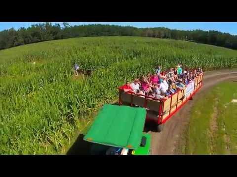 Fun at the West Farm Corn Maze