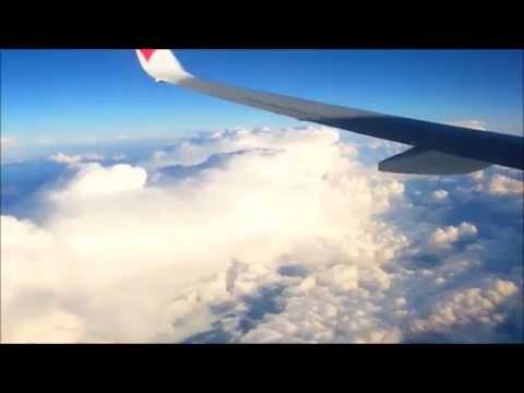 B737-800  新千歳空港 NEW CHITOSE ⇒ 中部国際空港 NAGOYA  Takeoff,Climb,Cruise,Descend,Approach,Landing