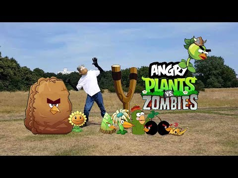 Real life Plants Vs Zombies And Angry Plant Birds - bowser12345