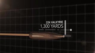 224 Valkyrie Cartridge Comparison