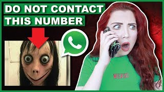 Gambar cover DO NOT Contact Momo | Scary Phone Number