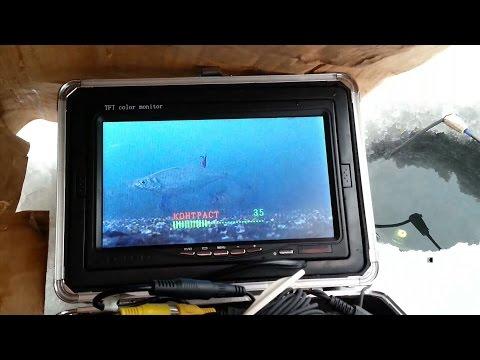 лещ не идёт. подводные видео съёмки