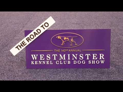 Road to Westminster (RTW): Mauricio Vargas and Winston