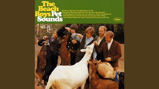 Pet Sounds (Stereo / Remastered)