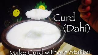 How to Make Thick Curd without Starter at home || The Variety of Flavours