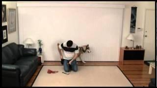 Basic Dog Training Skills - Using Equipment - 05 Sporn Harness