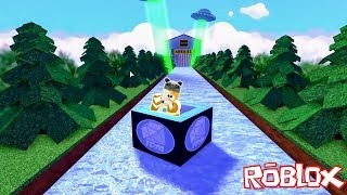Sliding Through Challenging Tracks with Box - Panda and Roblox