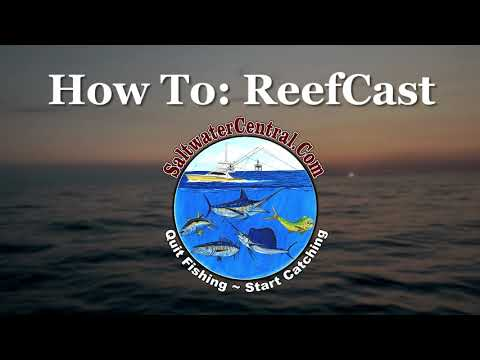 ReefCast:  Offshore Weather Forecasting