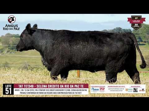 LOTE 51 TE1349 SELENA CREDITO DA RIO DA PAZ - Prod. Agência e TV El Campo